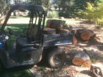 Hauling oak firewood with the Polaris Ranger EV