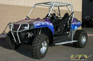 Custom Polaris RZR 170