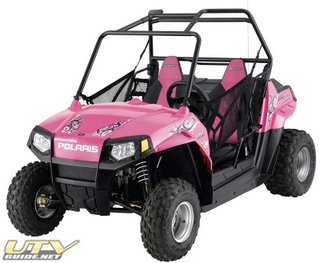 RZR 170 LE Pink Power
