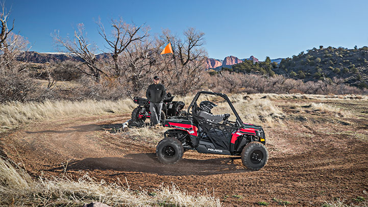 Polaris ACE 150