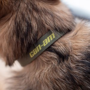 Can-Am Off-Road Dog Leash and Collar