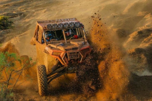 ITP Coyote Tire